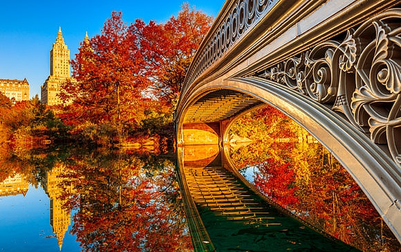 Autumn in New York images
