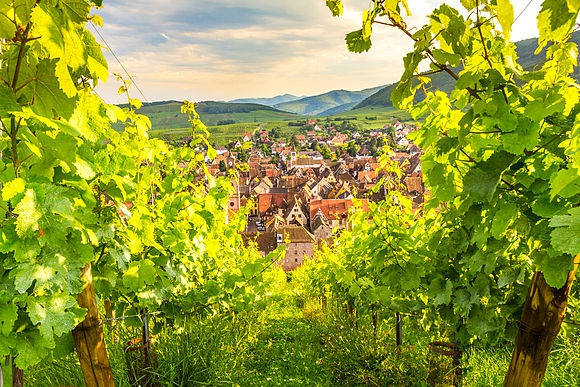 Alsace Stock Photos