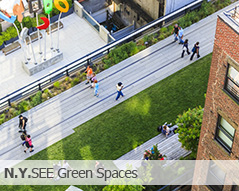 Green Spaces of New York Pictures