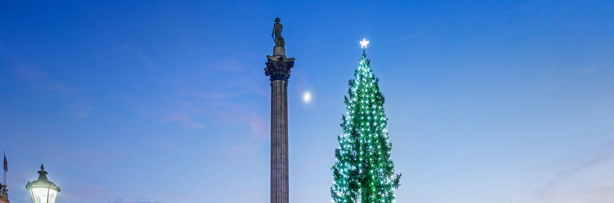 BVH-20643866 | UK/London, Christmas Tree on Trafalgar Square with Admiral Lord Nelson Column in December | © Reinhard Schmid/4Corners