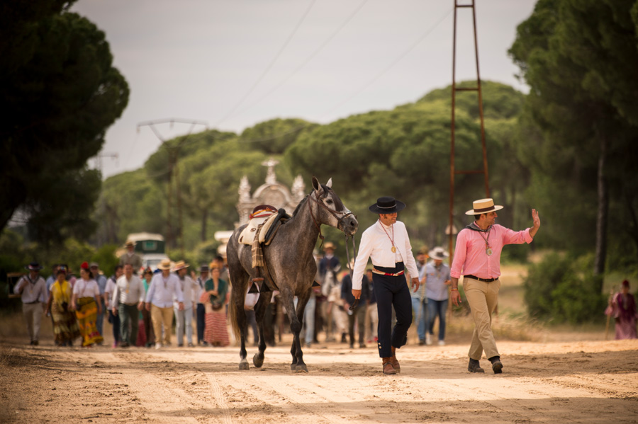 Romería del Roció Spain's Romería del Roció is uniquely Andalusian, taking place at Whitsun every year. Photography by Ben Pipe